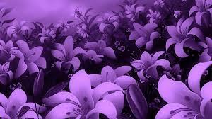 flores d